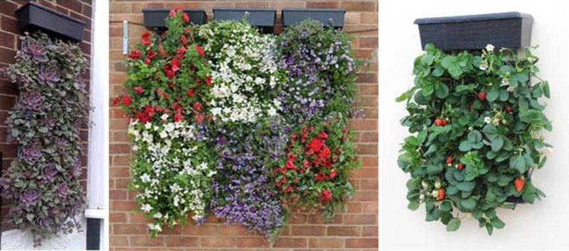 M dulos jard n vertical flores castillon for Modulo jardin vertical