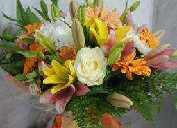 floristeria)celebraciones)flores-variadas