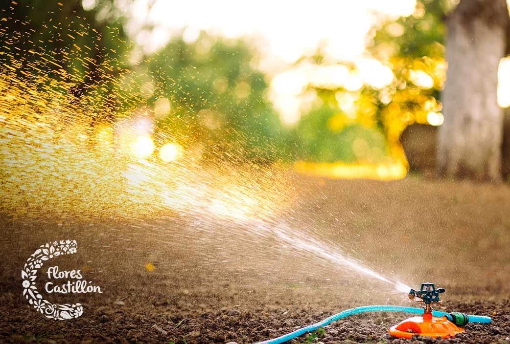 ventajas del uso del riego automatico en tu jardin