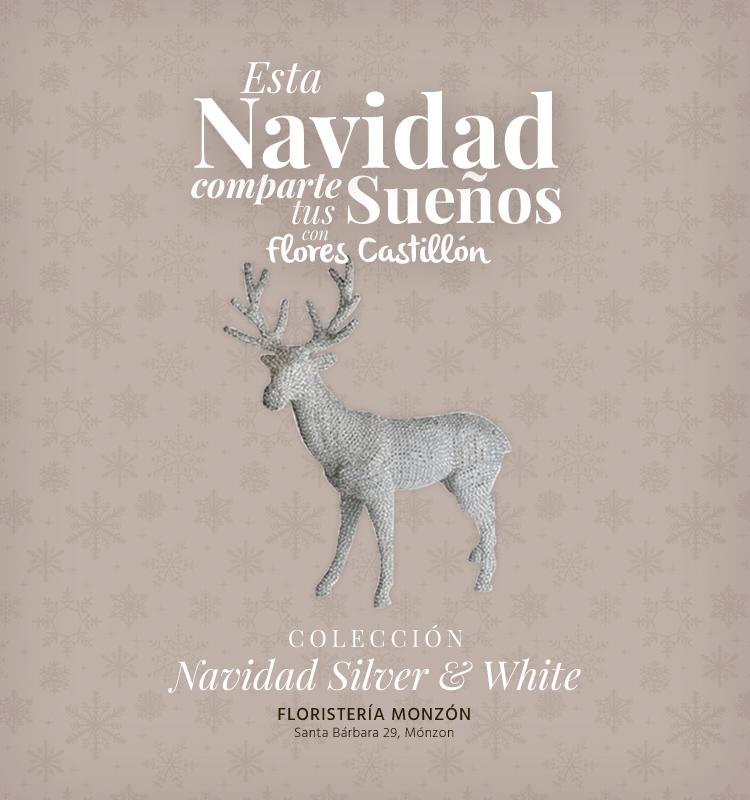 Navidad2014.Colección_Silver&White