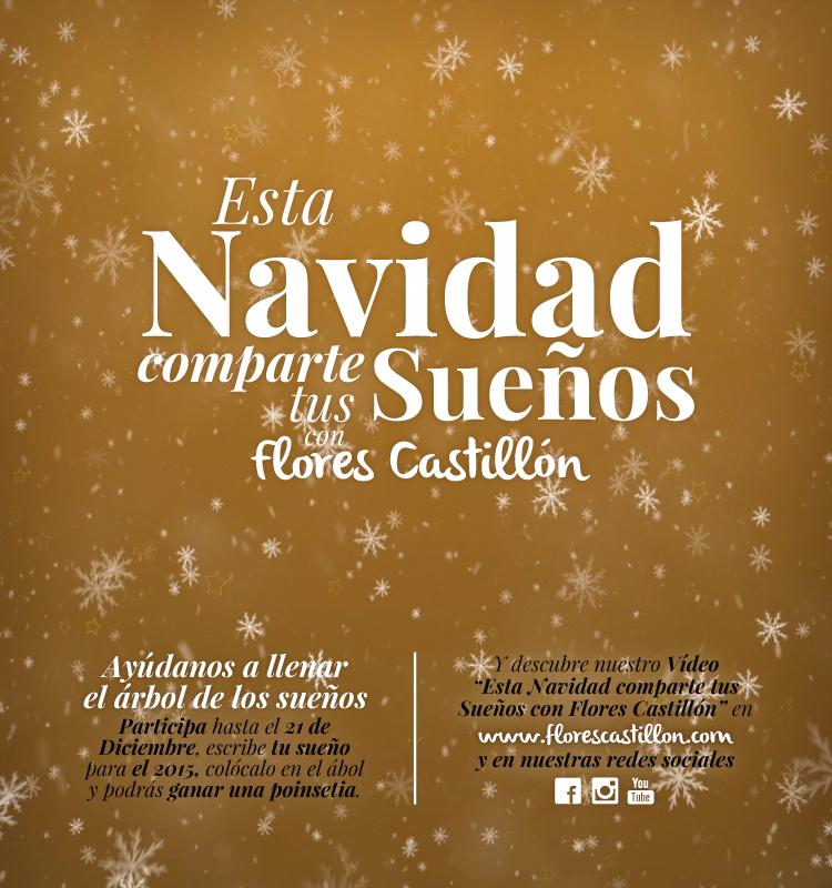 Navidad2014.Presentación