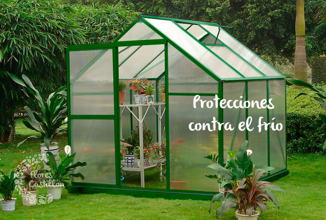 proteccioens14
