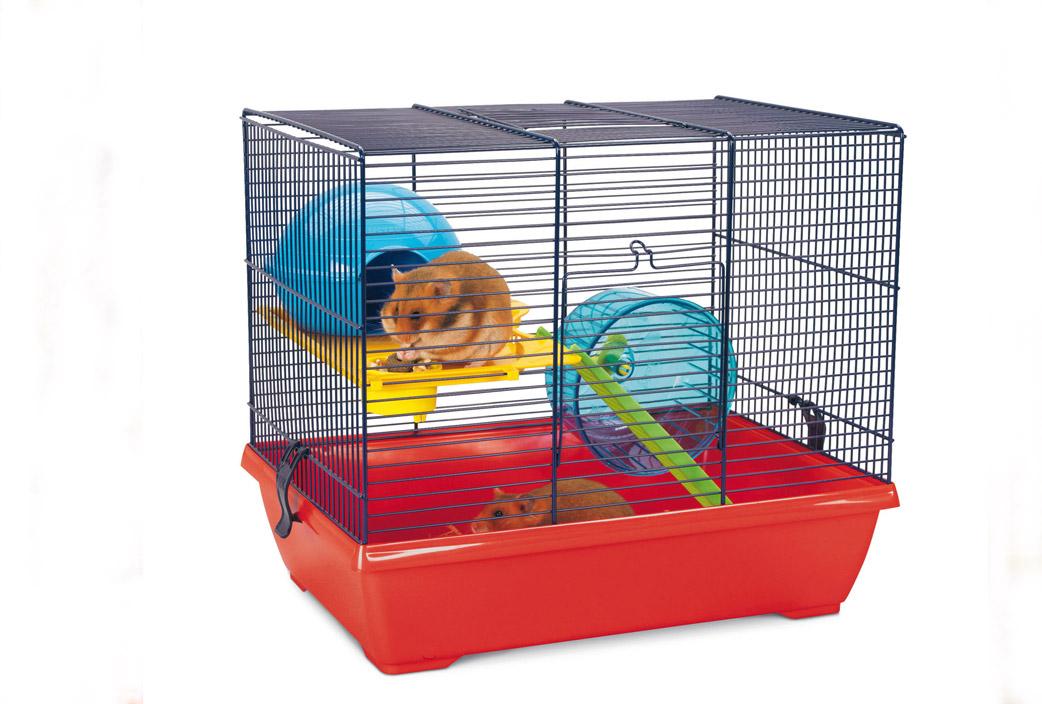 hamster4-marcajaula