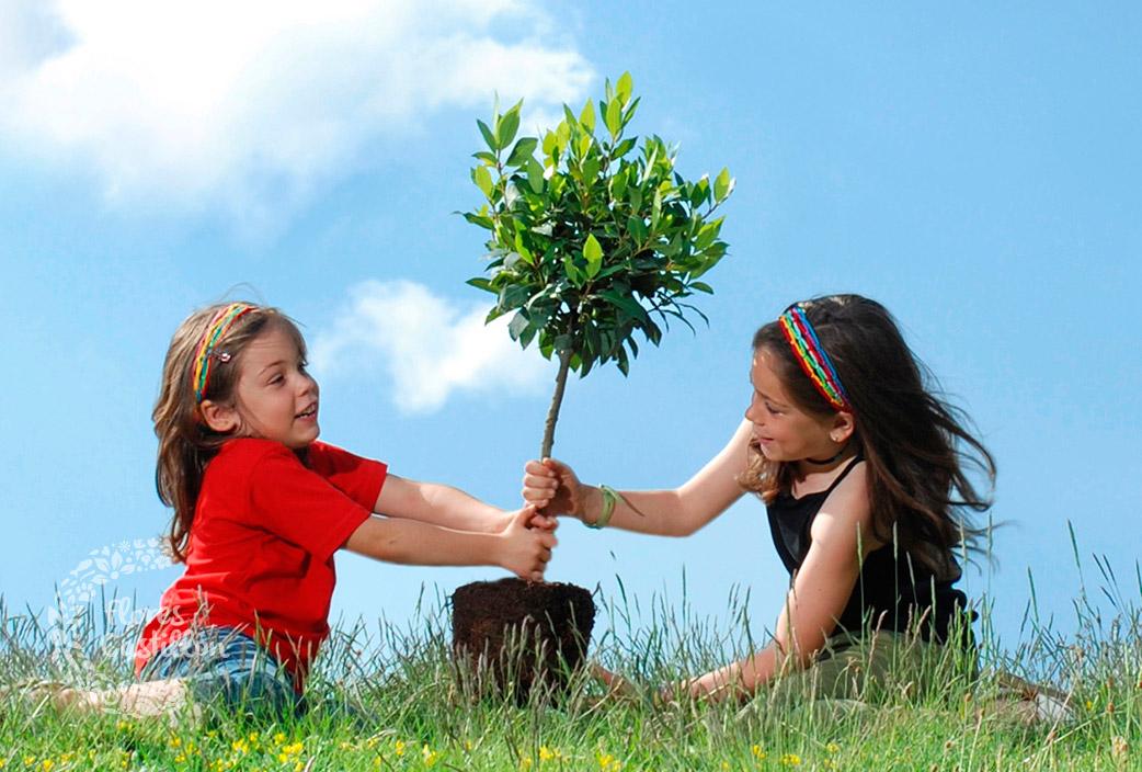 niños-plantando-arboles