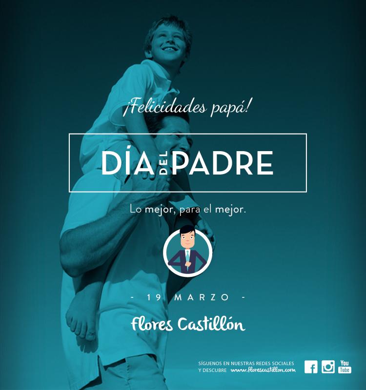 imagen_campaña_Diadelpadre2015