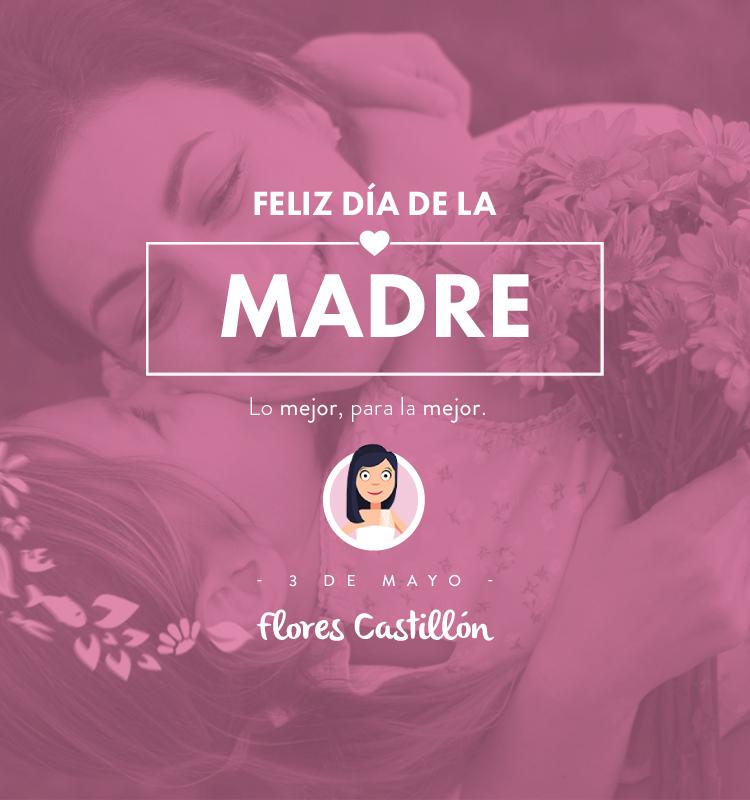 imagen_campaña_Diadelamadre2015