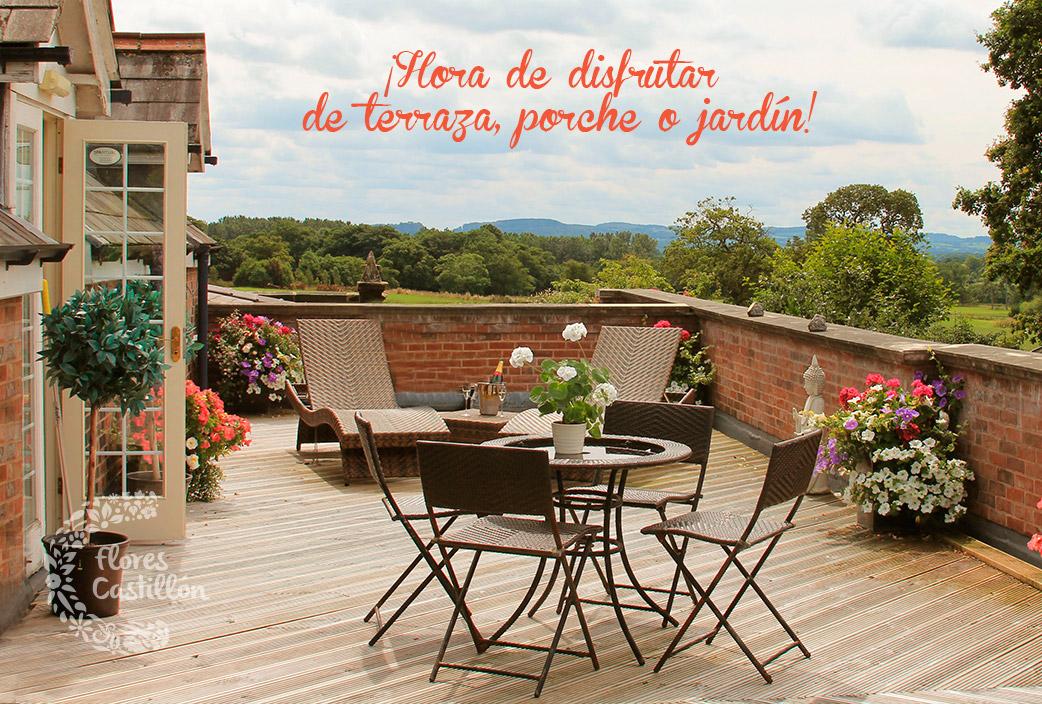 terraza-o-jardin