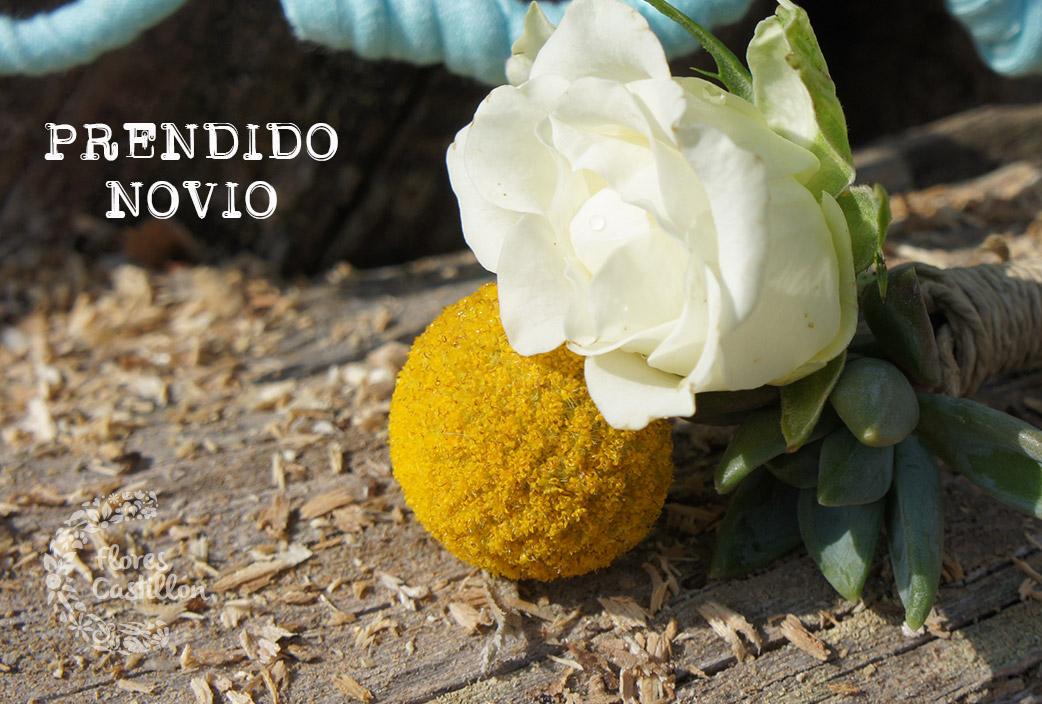 PRENDIDO-NOVIO