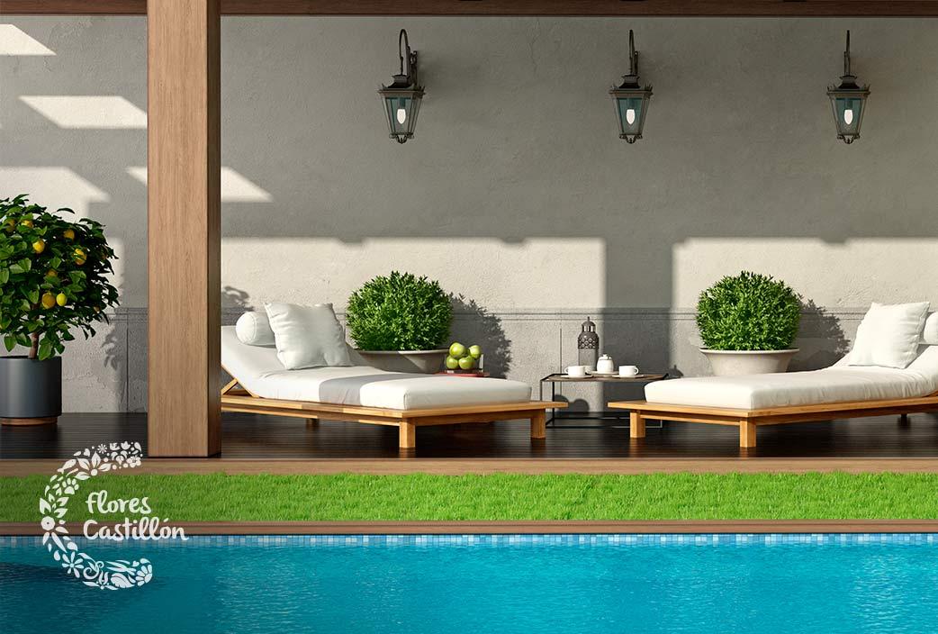 C mo decorar jardines peque os flores castill n Fotos piscinas para espacios pequenos