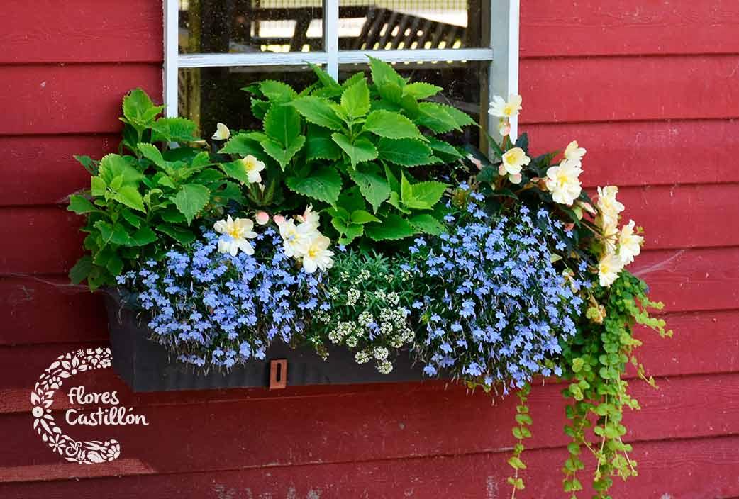 Imagenes De Jardines Con Flores: ¿Cómo Decorar Jardines Pequeños?