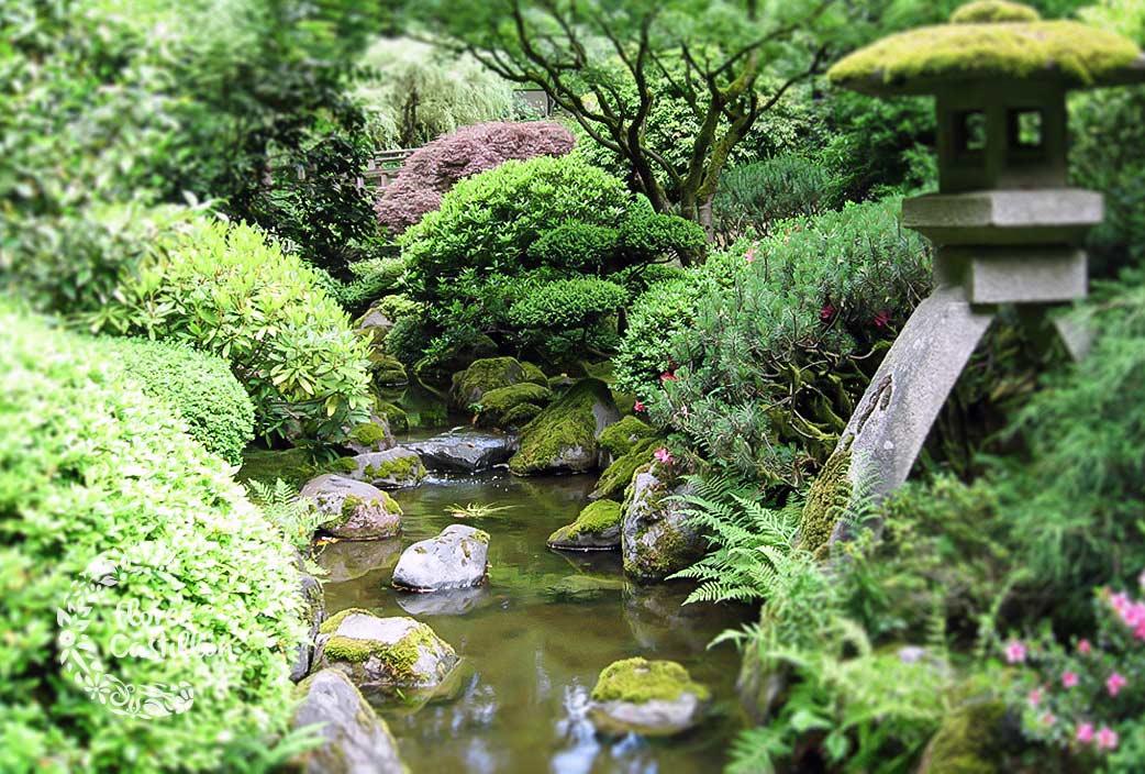 Jardines japoneses crea tu propio espacio zen flores for Crea tu jardin