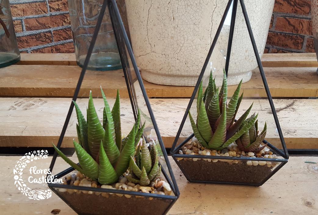 cactus-aloe-artificial