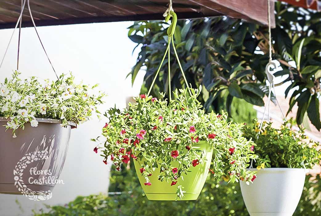 Decoraci n de jard n y terrazas 2017 top mejores for Decoracion con plantas para exteriores