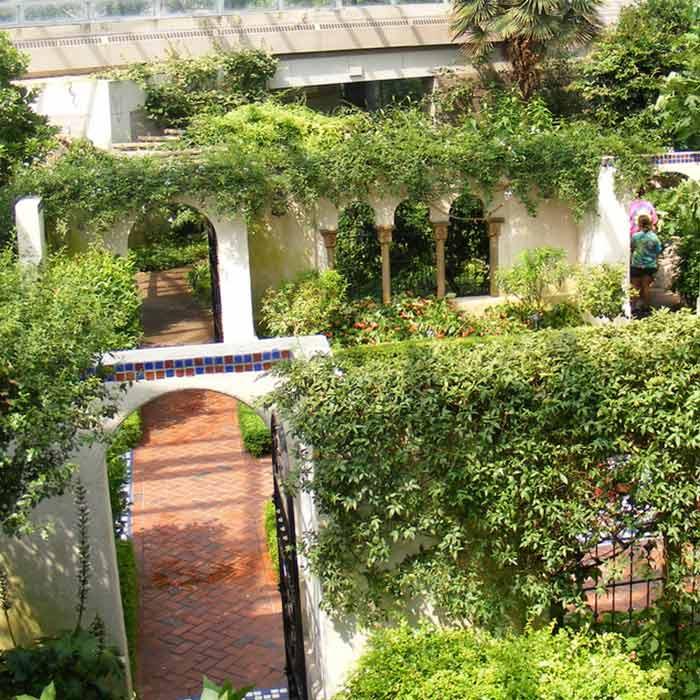 Flores castill n florister as en barbastro y monz n for Plantas jardin mediterraneo