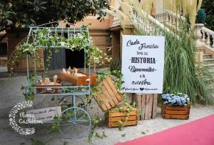 entrada a boda en jardin