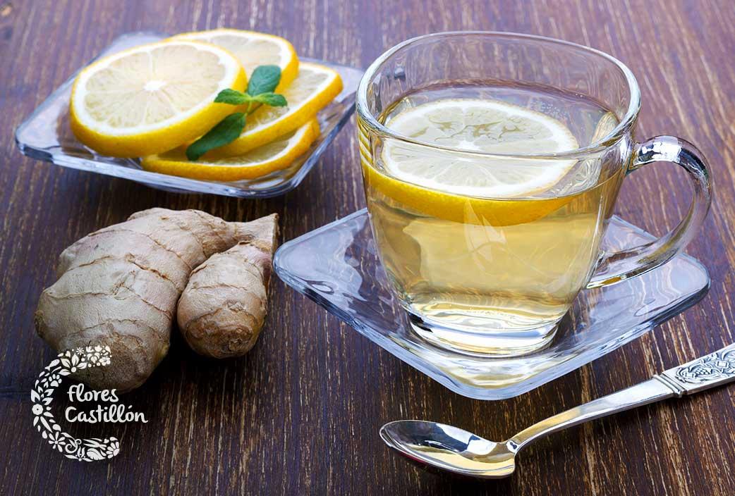 como curar los resfriados con plantas medicinales